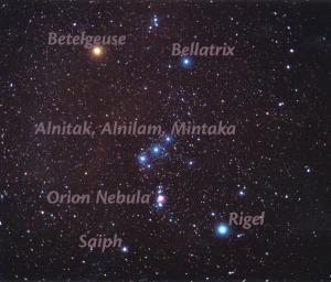 orion_spinelli_labelled