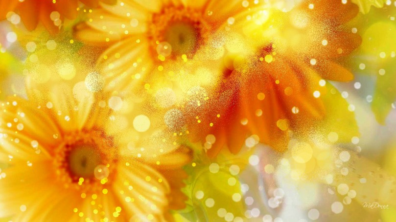 gerbera-glow-gems-99814