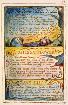 Songs_of_Innocence_and_of_Experience,_copy_AA,_1826_(The_Fitzwilliam_Museum)_object_43_My_Pretty_Rose_Tree