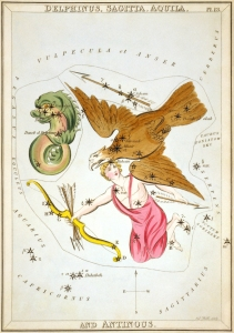 From the book Urania's Mirror. Shows Aquila with the now-obsolete constellation Antinous.