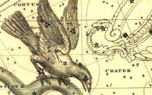 The constellation Corvus, with the Crater beside him. From the site Germanic Astromony.
